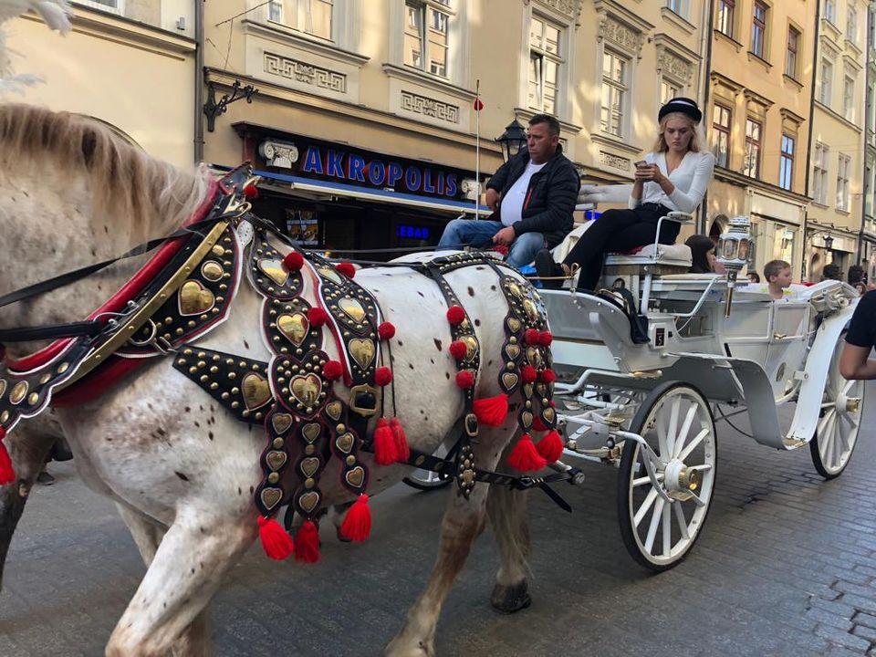 Povoz v Krakově