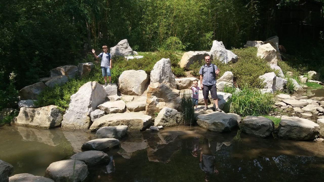 Japonská zahrada v ZOO Lešná