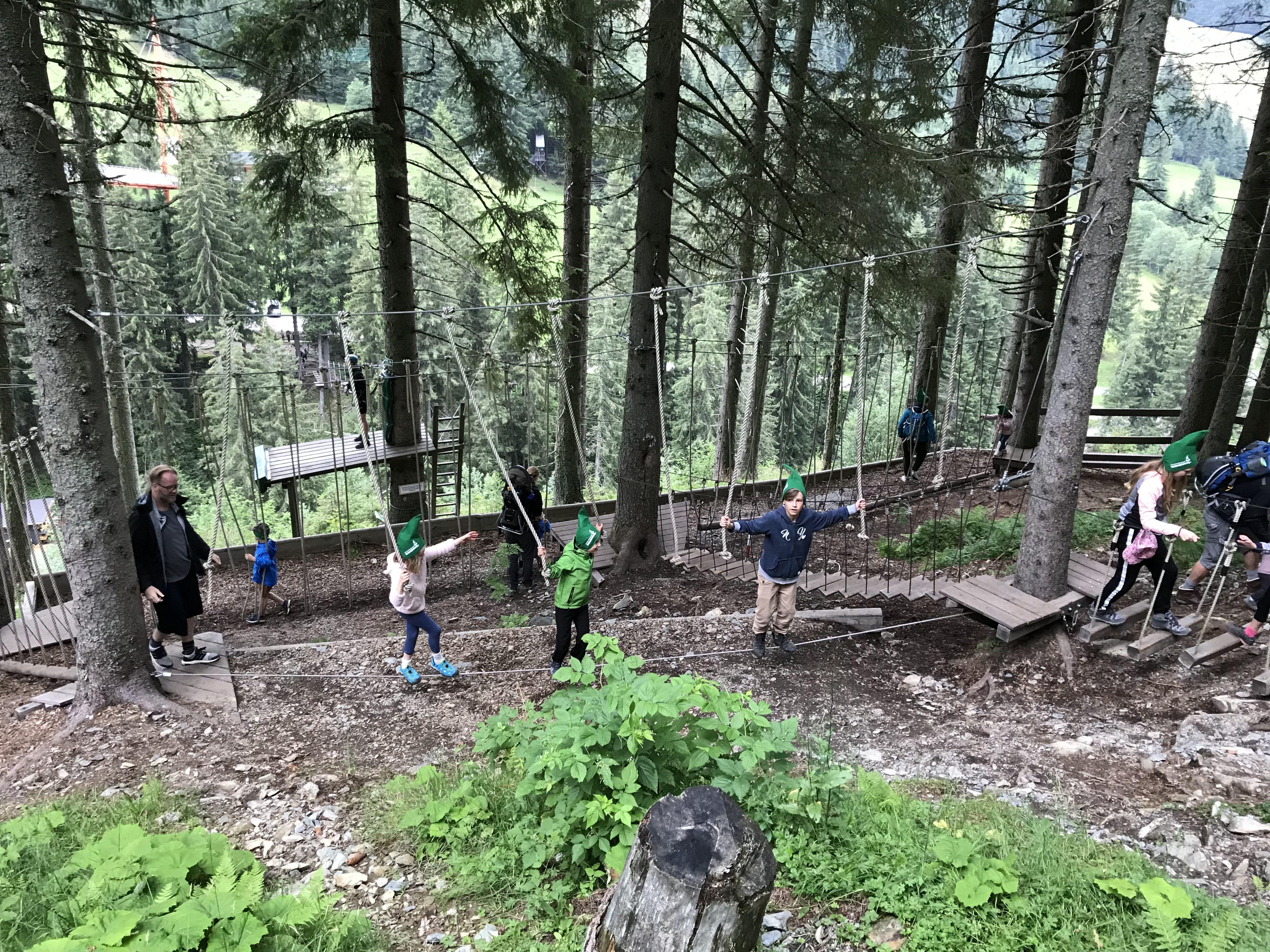 Stezka v korunách stromů v Lengau