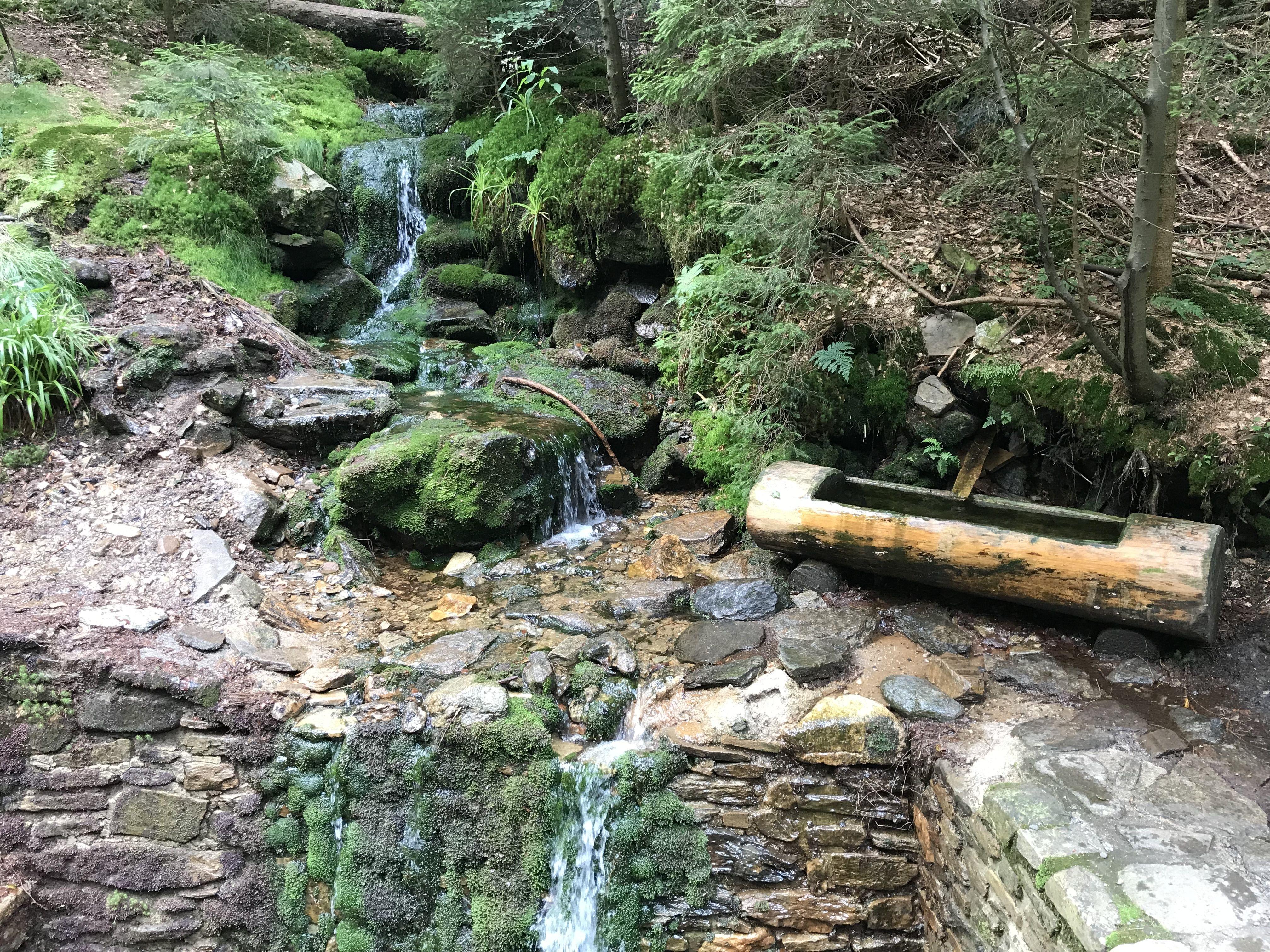 Cestou k vodopádu Bílá strž
