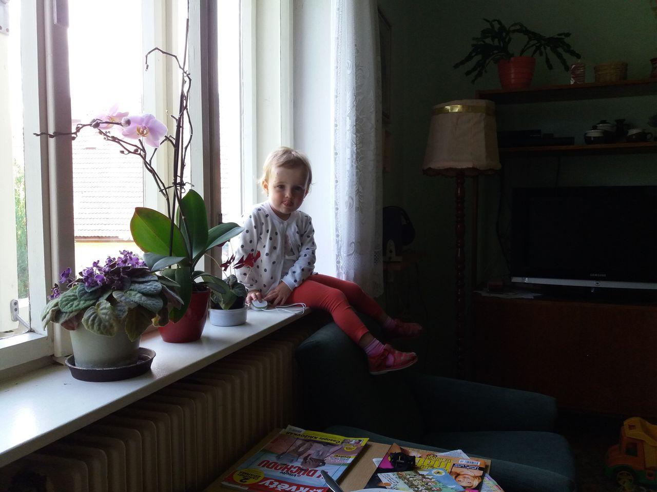 Zdenda na okně